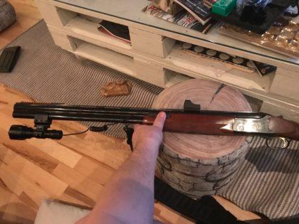 ریل پیکاتنی تفنگ دو لول